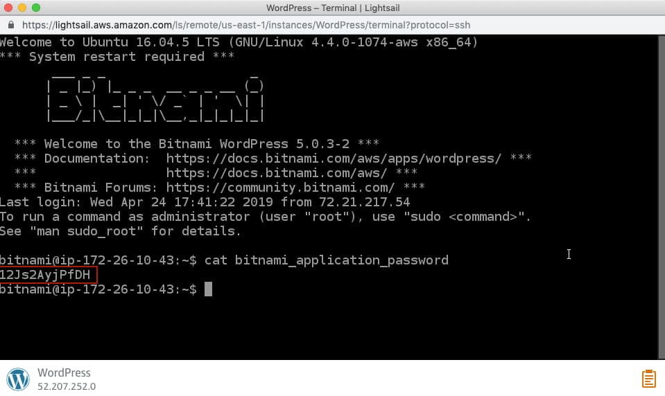 AWS LightSail Terminal.